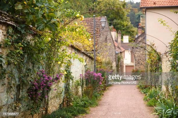 Savigny-les-Beaune, near Beaune, Burgundy, France