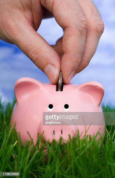 saving and growing - bringing home the bacon stock pictures, royalty-free photos & images
