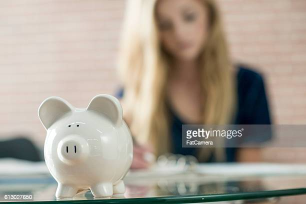 Savings in a Piggy Bank