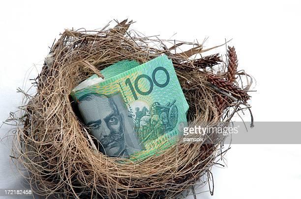 Savings Nest Egg - Close Up