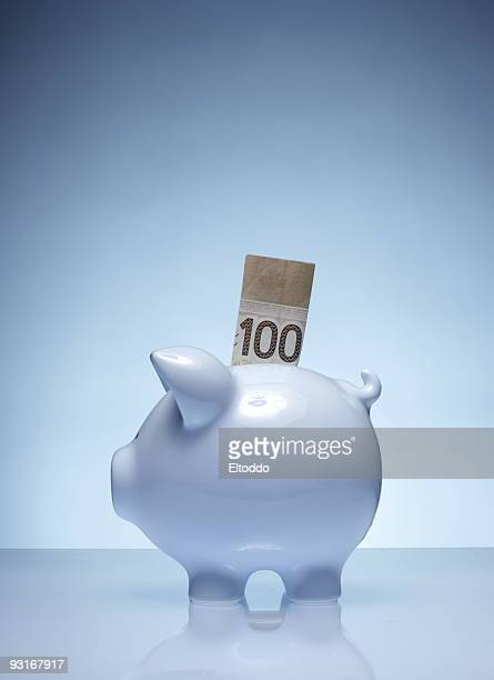 savings plan #2 - canadian dollars stock pictures, royalty-free photos & images