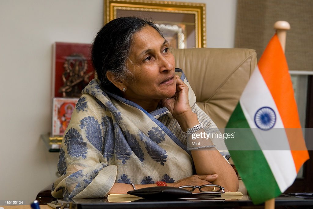Profile Shoot Of Non-Executive Chairperson Of Jindal Steel & Power Limited Savitri Jindal : News Photo