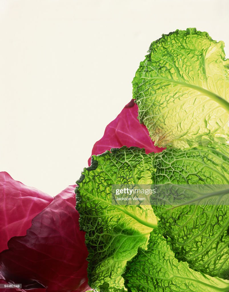 Savoy and red cabbage leaves : Stock Photo