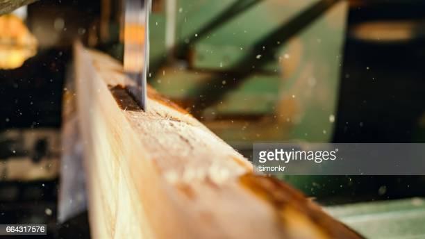 Saw cutting a log