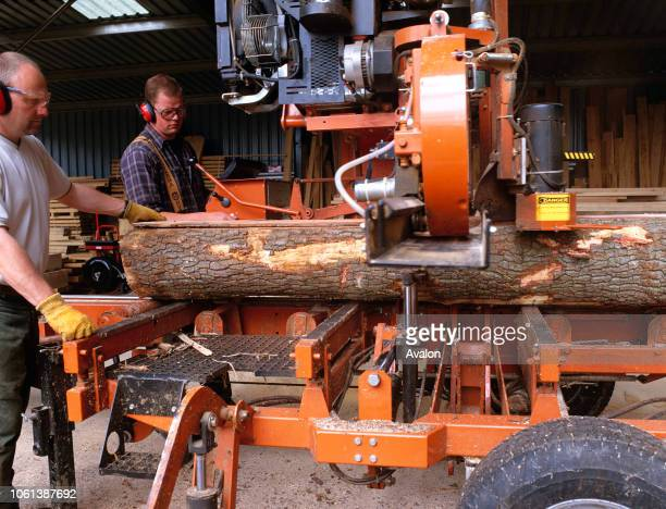 Saw mill producing planks from oak trees Mostyn Estate North Wales UK