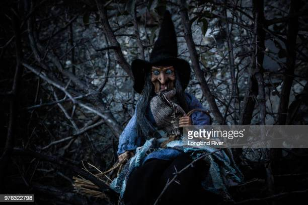 I saw the witch!!!