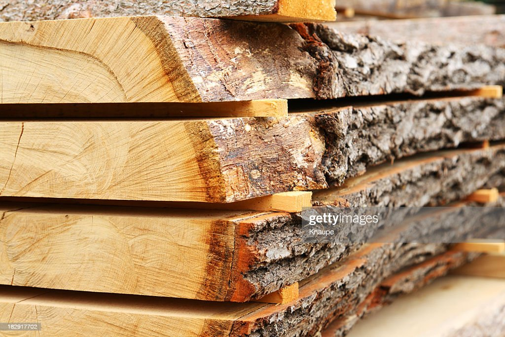 Sawed oak tree trunk plank being dried : Stock Photo