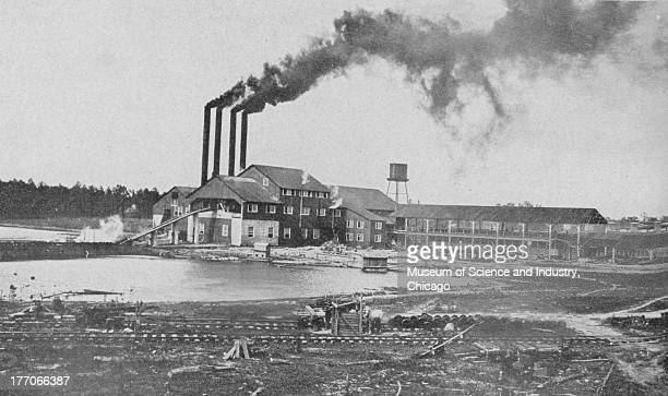 Sawmill Department Cut 11432 black and white photograph of the exterior of a Sumter Lumber Company sawmill which is entirely driven by electric...