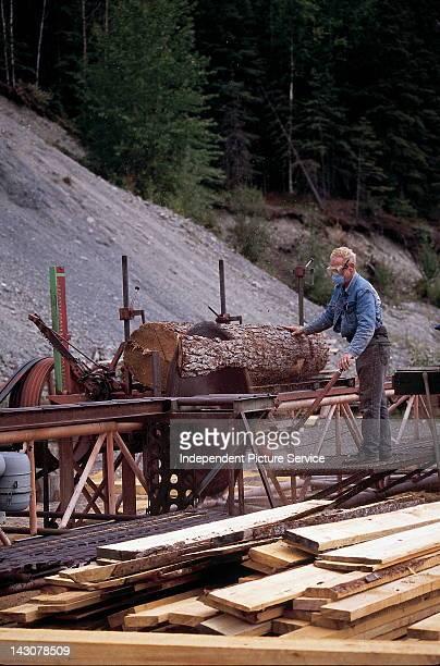 Sawmill in Cooper Landing, Alaska.