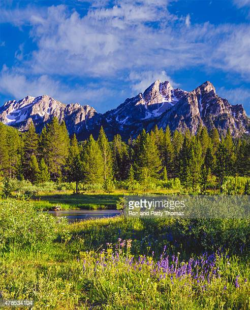 sawtooth mountain range, mc gowan peak,stanley idaho(p) - idaho stock pictures, royalty-free photos & images