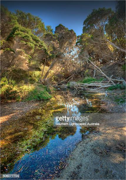 Sawyers Bay, Flinders Island, part of the Furneaux group, eastern Bass Strait, Tasmania.