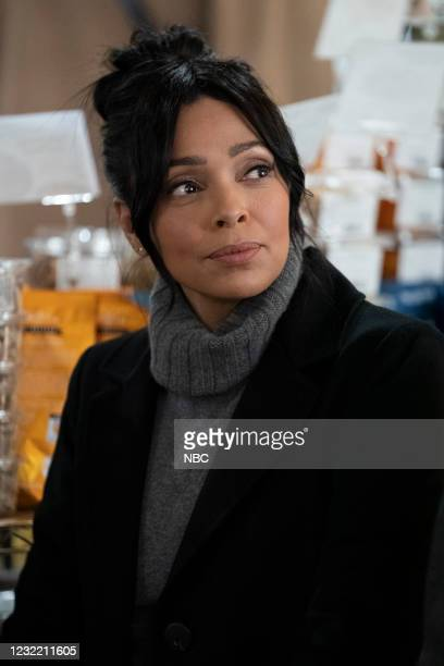 "Say Hello To My Little Friend"" Episode 103 -- Pictured: Tamara Taylor as Angela Wheatley --"