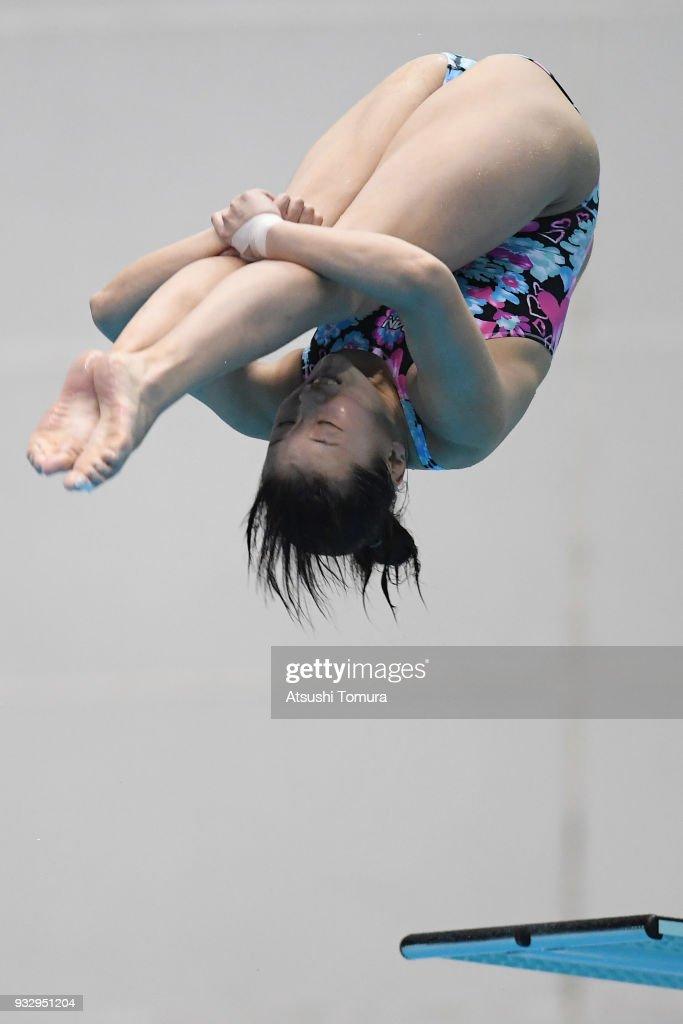 FINA Diving World Series - Fuji Day 3