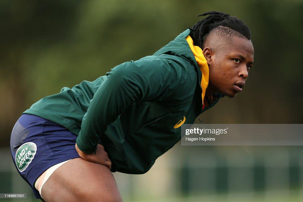 Springboks Media and Training Session : News Photo