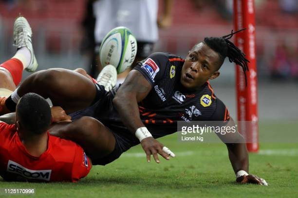 Sbu Nkosi of Sharks scores a try during the Super Rugby match between Sunwolves and Sharks at Singapore National Stadium on February 16 2019 in...