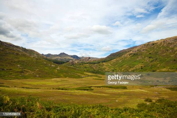 scafell pike over forest in the english lake district - falling stock pictures, royalty-free photos & images