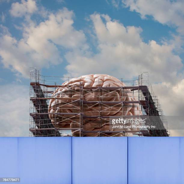 scaffolding around brain under construction - john lund stock pictures, royalty-free photos & images