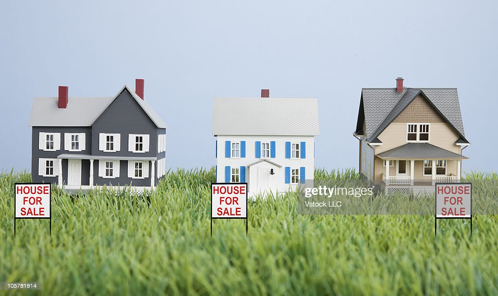 Scale model homes on grass : Stock Photo