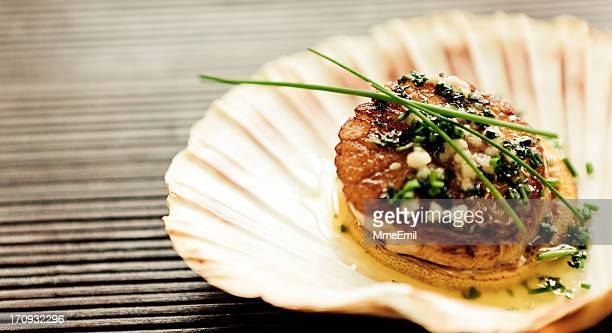 Scallop: delicious pearl in a shell