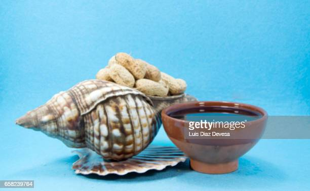 scallop shell filled with snacking peanuts - manchado stock pictures, royalty-free photos & images