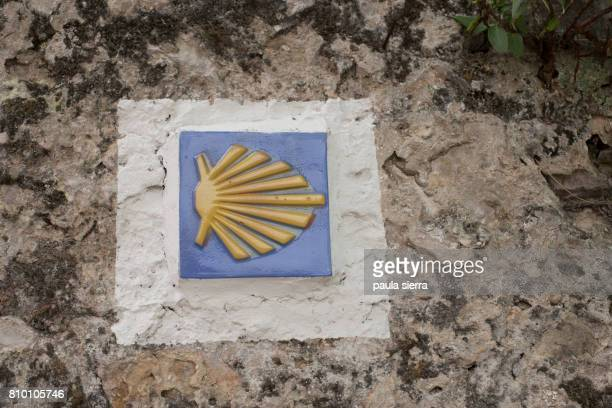 scallop shell symbol marking the pilgrim's path to santiago de compostela - santiago de compostela stock pictures, royalty-free photos & images