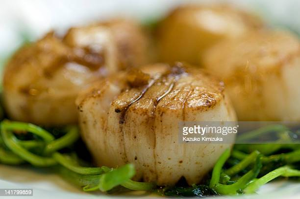 scallops - kazuko kimizuka stock pictures, royalty-free photos & images
