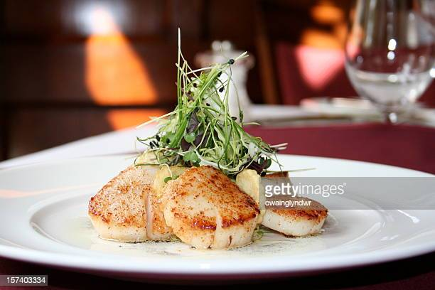 Scallops presented on a white dining plate