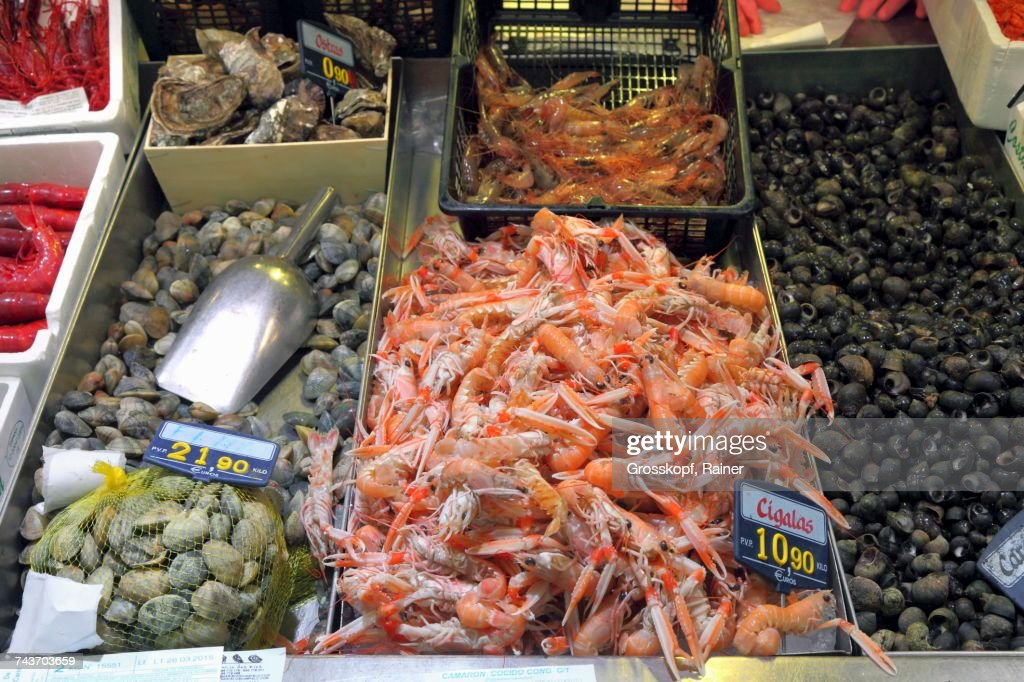 Scampi, clams, oysters and sea snails at a fish market in Bilbao, Basque Country, Spain : Stock-Foto