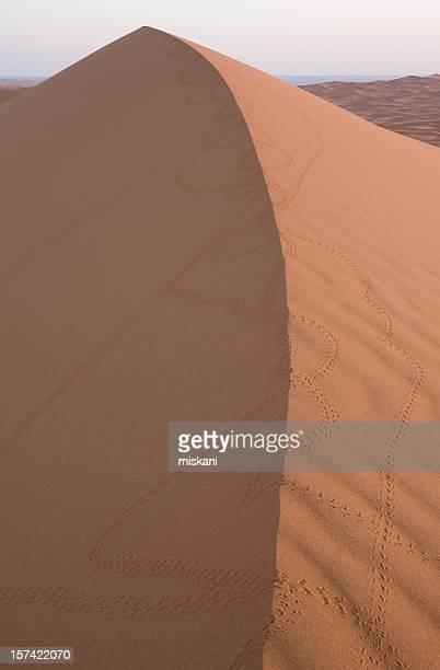 Scarab dunes