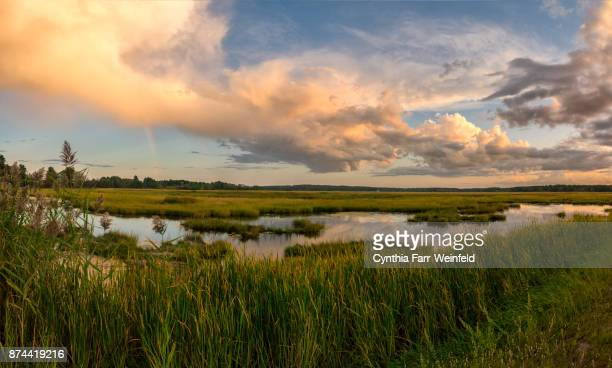 scarborough marsh rainbow panorama - marsh stock pictures, royalty-free photos & images