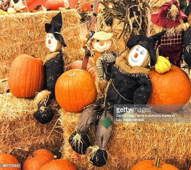 scarecrow characters with pumpkins and bales of hay at a fall festival in henderson nevada - scarecrow agricultural equipment stock photos and pictures