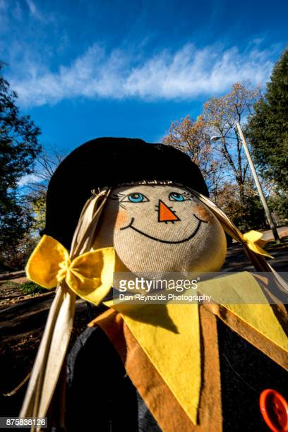 Scarecrow Decoration with copy space