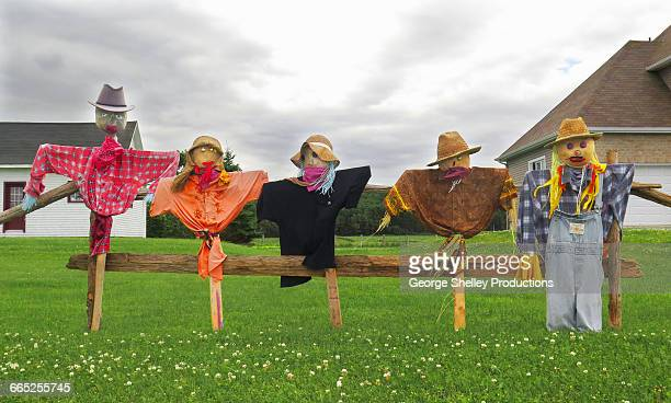 Scarecrow family lined up in a row
