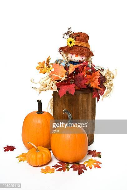 scarecrow in a barrel - scarecrow agricultural equipment stock photos and pictures