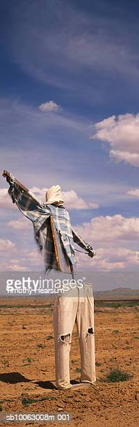 scarecrow in field - timothy hearsum stock photos and pictures