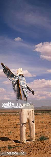 scarecrow in field - timothy hearsum stockfoto's en -beelden
