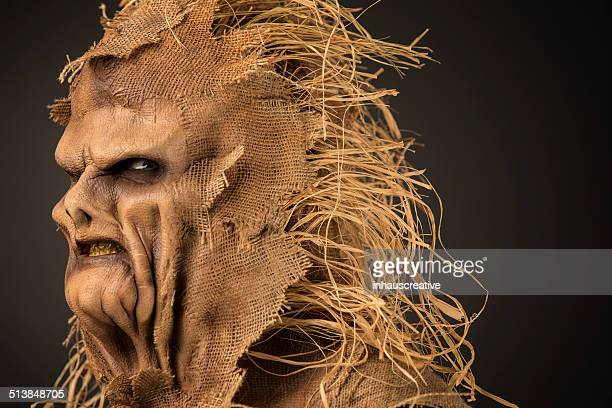scarecrow killer - scarecrow agricultural equipment stock photos and pictures