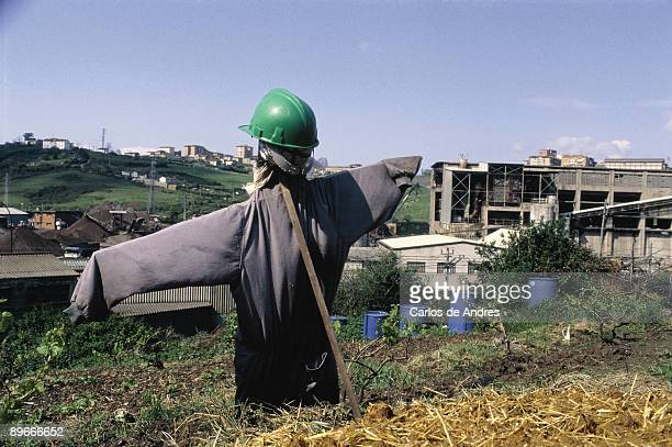 Scarecrow near an abandoned factory Scarecrow in a cultivated field near a bandoned factory in Gallarta County of Biscay