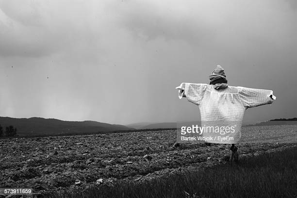 Scarecrow On Agricultural Field Against Cloudy Sky At Dusk