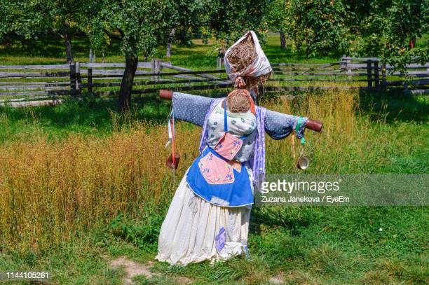 scarecrow on agricultural field - zuzana janekova stock pictures, royalty-free photos & images