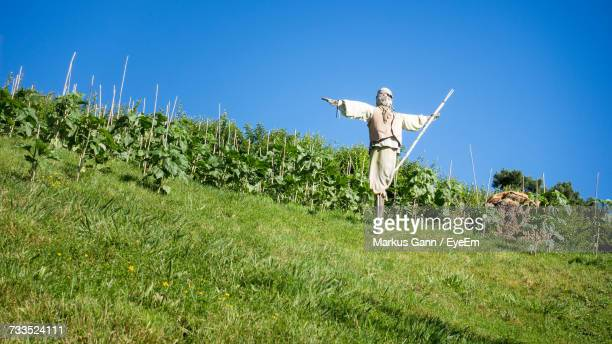 Scarecrow On Field Against Clear Blue Sky