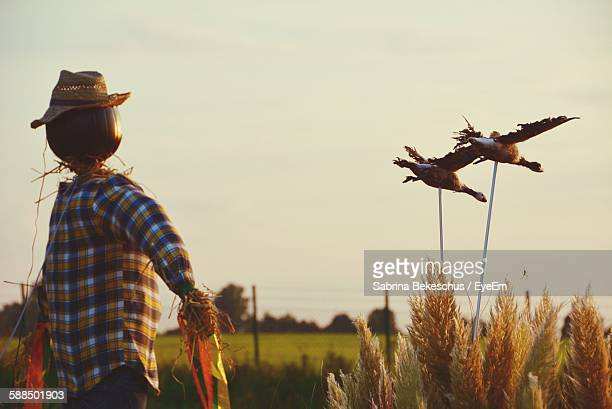 Scarecrow On Field Against Sky