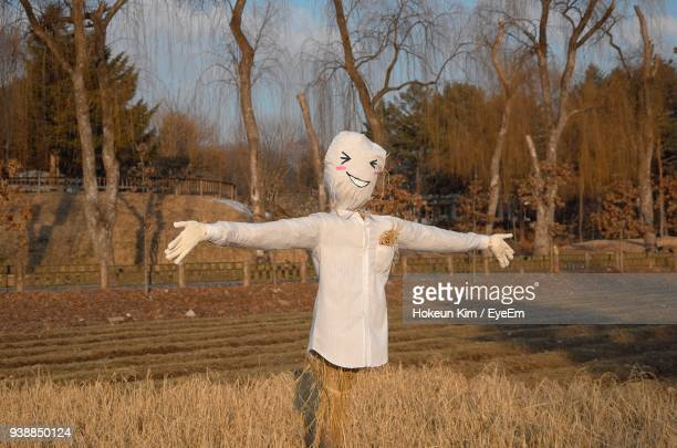 scarecrow on field during sunny day - scarecrow faces stock photos and pictures