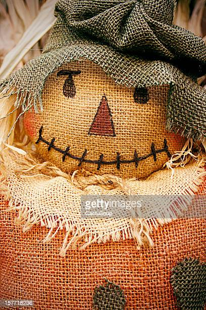 scarecrow - scarecrow faces stock photos and pictures