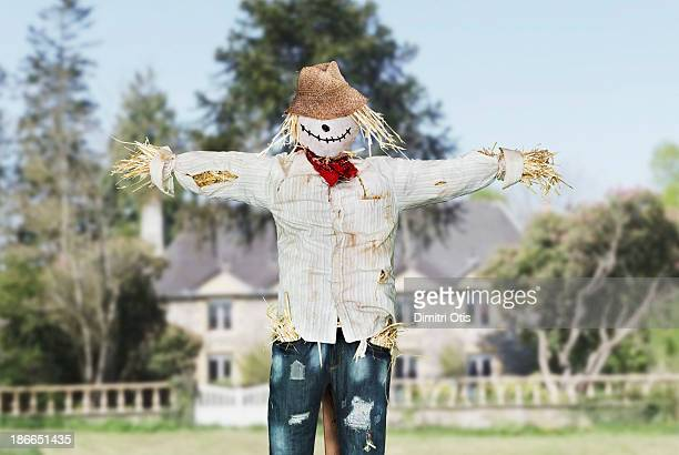 Scarecrow protecting house in open field