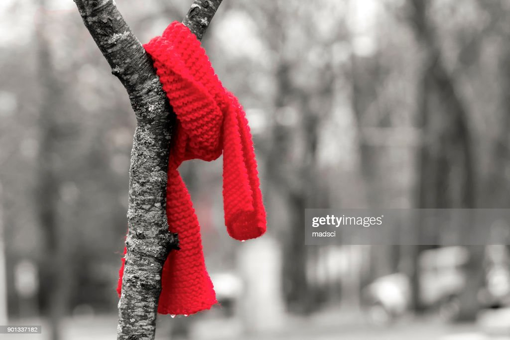 Scarf In A Tree : Stock Photo