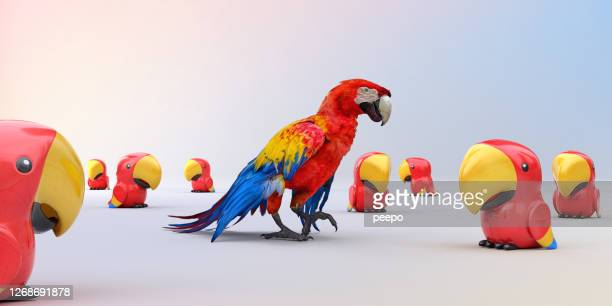 scarlet macaw parrot walking in group of plastic parrot toys - individuality stock pictures, royalty-free photos & images