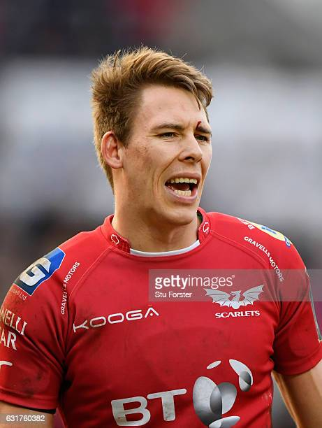 Scarlets fullback Liam Williams in action during the European Rugby Champions Cup match between Scarlets and Sarcens at Parc y Scarlets on January 15...