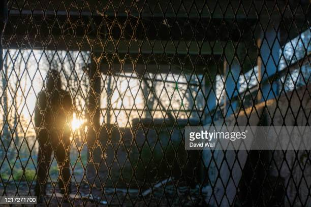 a scary hooded figure standing in the entrance of an abandoned ruined building. with the sunset behind - non urban scene stock pictures, royalty-free photos & images