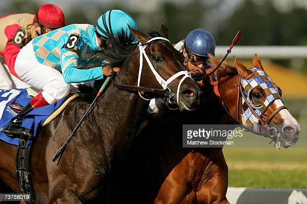 Scat Daddy ridden by Edgar Prado passes Stormello ridden by Victor Espinoza on the final stretch during the 56th Running of the Florida Derby at...